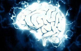 Neuroscience Nuggets