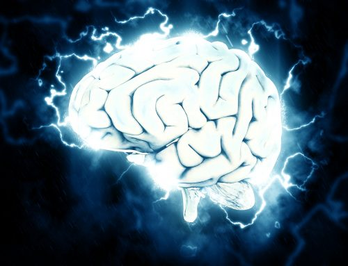 Think. See. Do. – Neuroscience Nuggets – Part 2